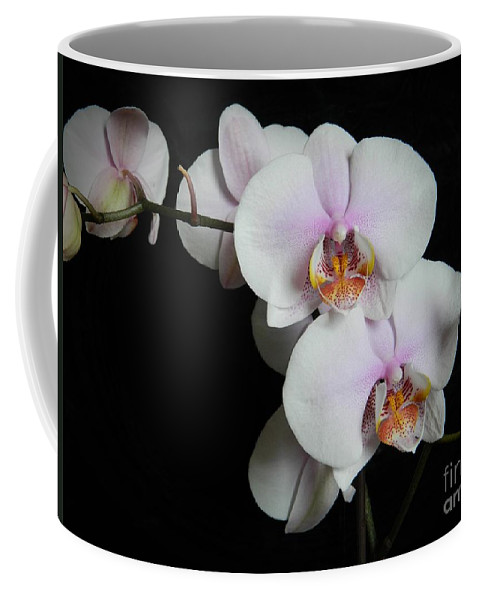 Orchid Portrait Coffee Mug featuring the photograph Orchid Portrait by Chalet Roome-Rigdon