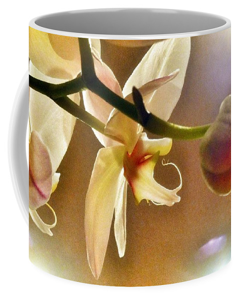 Orchid Coffee Mug featuring the photograph Orchid by Susan Garren