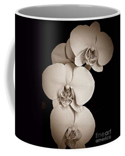 Orchid Trio Sepia Coffee Mug featuring the photograph Orchid Trio Sepia by Chalet Roome-Rigdon