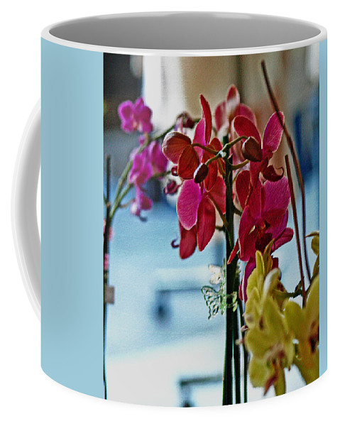 Orchids Coffee Mug featuring the photograph Orchids In A Window by Joseph Coulombe