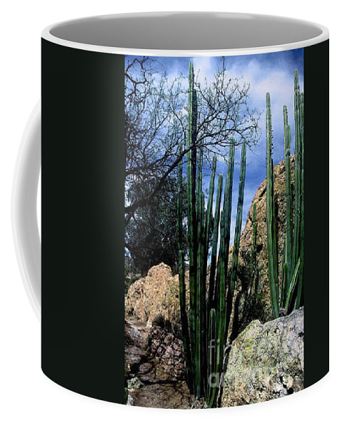 Cactus Coffee Mug featuring the photograph Organ Pipe by Kathy McClure