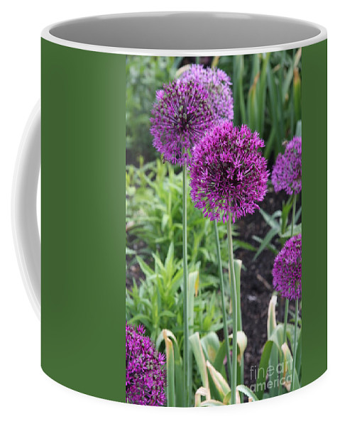 Flowers Coffee Mug featuring the photograph Ornamental Leek Flower by Christiane Schulze Art And Photography