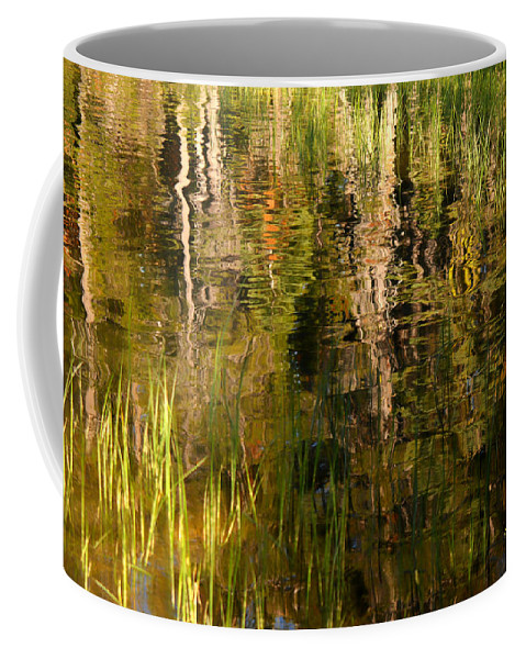 Abstract Coffee Mug featuring the photograph Out In The Reeds by Donna Blackhall