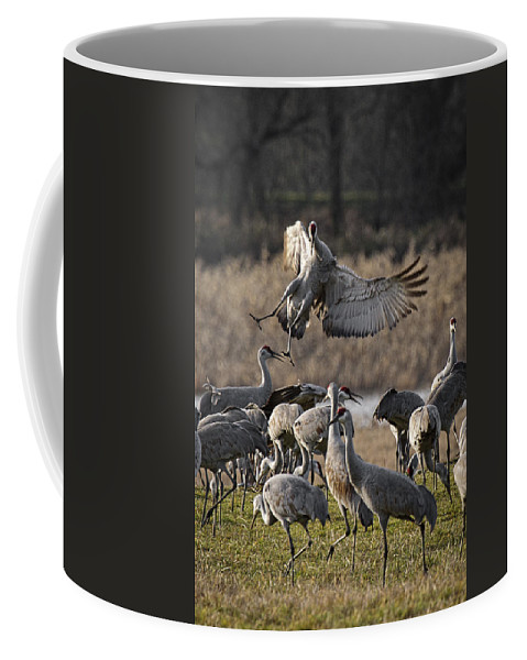 Out Of Control Coffee Mug featuring the photograph Out Of Control by Wes and Dotty Weber