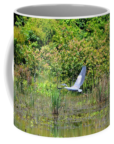 Over Golden Waters Coffee Mug featuring the photograph Over Golden Waters by Maria Urso