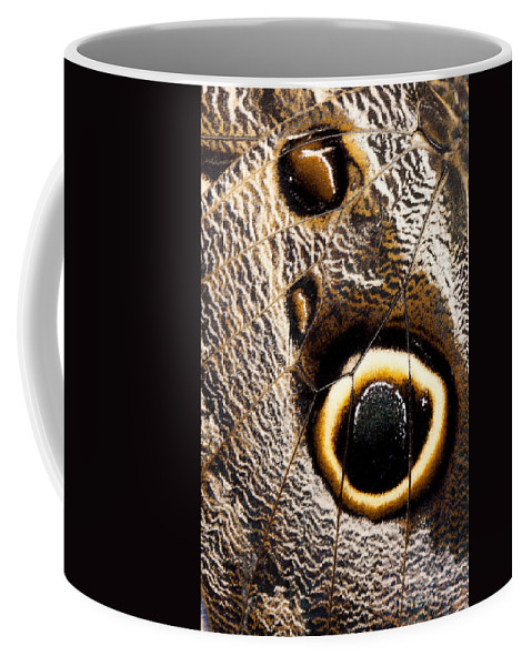 Closeup Coffee Mug featuring the photograph Owl Butterfly Wing by Anthony Totah