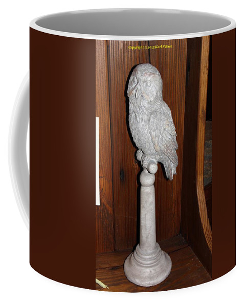 Owls Coffee Mug featuring the photograph Owl Statue by Karl Rose
