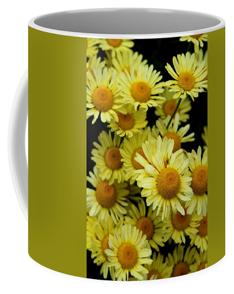Marguerite Coffee Mug featuring the photograph Ox Eye Daisies by Christiane Schulze Art And Photography