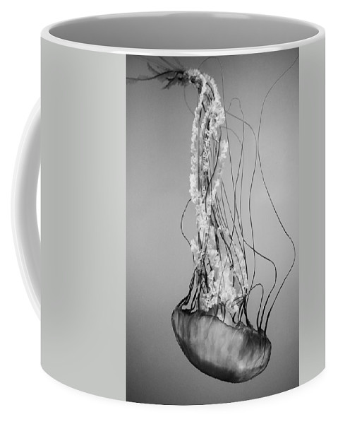 Pacific Sea Nettle Coffee Mug featuring the photograph Pacific Sea Nettle - Black And White by Marianna Mills