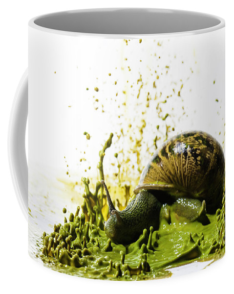 Impact Coffee Mug featuring the photograph Paint Sculpture And Snail 2 by Guy Viner