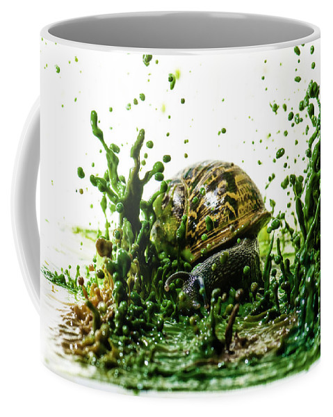 Impact Coffee Mug featuring the photograph Paint Sculpture And Snail 3 by Guy Viner