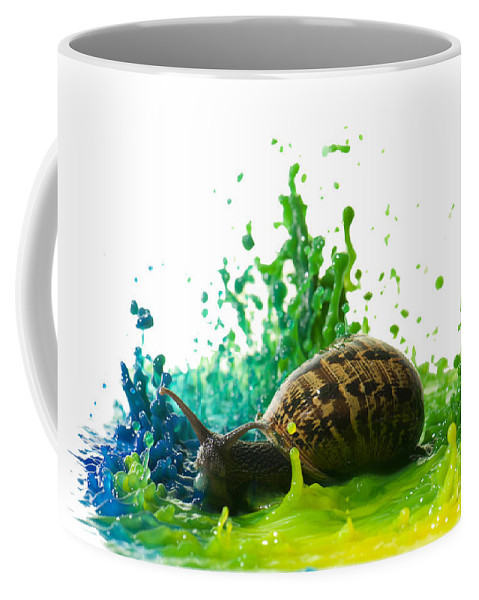 Impact Coffee Mug featuring the photograph Paint Sculpture And Snail 4 by Guy Viner