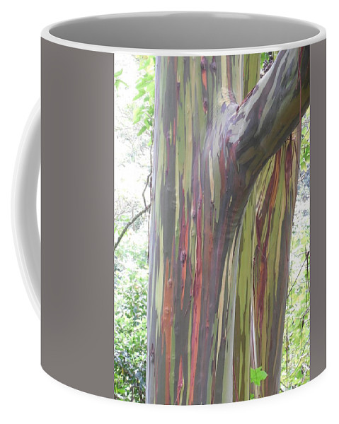 Painted Eucalyptus Coffee Mug featuring the photograph Painted Tree by Mike Niday