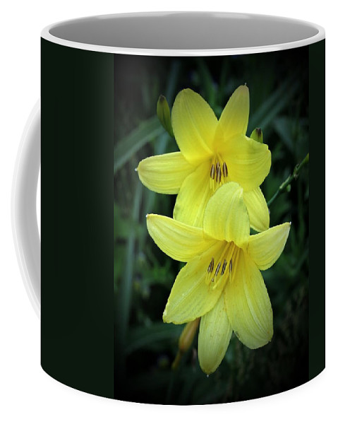 Lemon Lily Coffee Mug featuring the photograph Pair Of Lemon Lilies by MTBobbins Photography