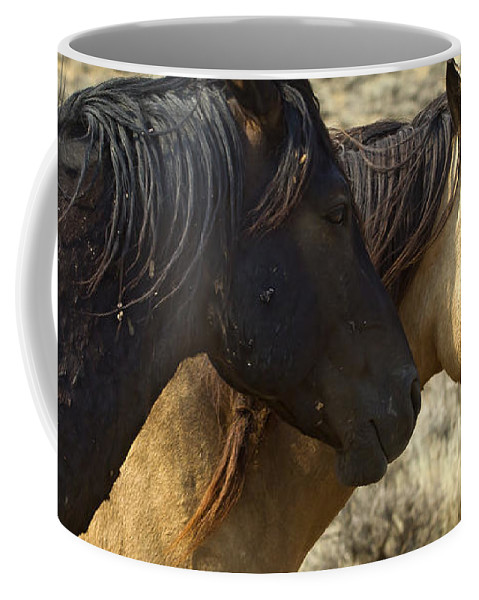 Horses Coffee Mug featuring the photograph Pair Of Wild Mares  #0469 by J L Woody Wooden