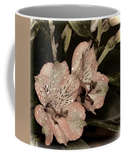 Flower Coffee Mug featuring the photograph Pale Pink Lilies On Dark Background by Phyllis Meinke