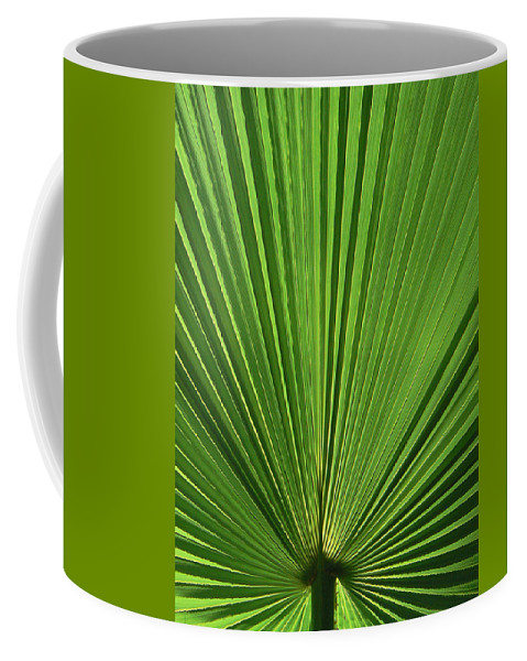 Palm Coffee Mug featuring the photograph Palm Fan Design by Margaret Saheed