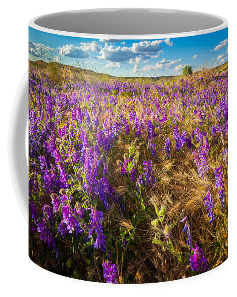 America Coffee Mug featuring the photograph Palouse Falls Wildflowers by Inge Johnsson