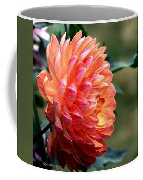 Pamela Howden Dahlia Coffee Mug featuring the photograph Pamela Howden Dahlia In Color by Jeanette C Landstrom