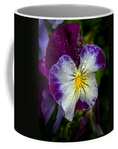 Flower Coffee Mug featuring the photograph Pansy by Robert Mitchell