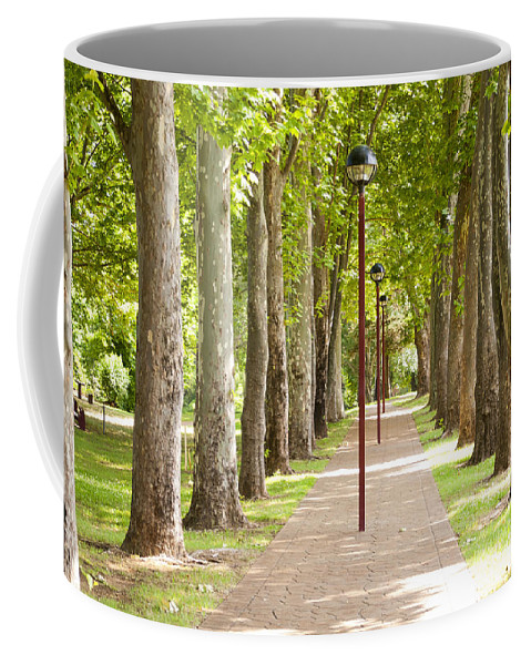 Trees Coffee Mug featuring the photograph Park Footpath by Tim Hester