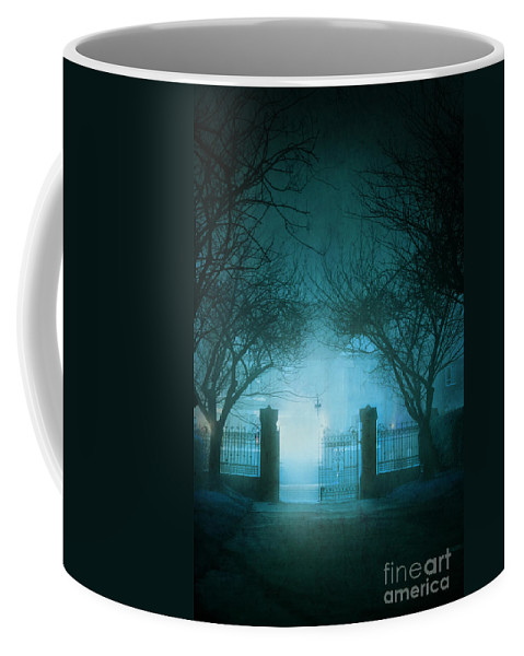 Park Coffee Mug featuring the photograph Park Gates At Night In Fog by Lee Avison