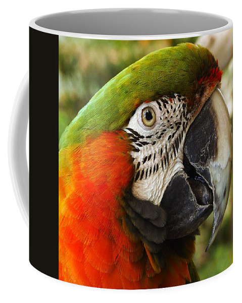 Beak Coffee Mug featuring the photograph Parrot 26 by Ingrid Smith-Johnsen