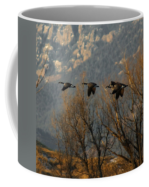 Birds Coffee Mug featuring the digital art Passing Through by Ernie Echols