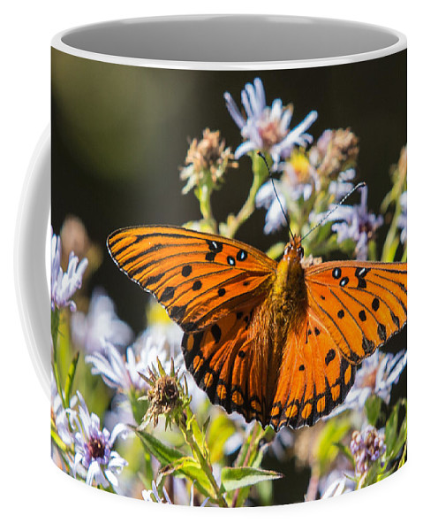 Gulf Fritillary Coffee Mug featuring the photograph Passion Butterfly by John Haldane