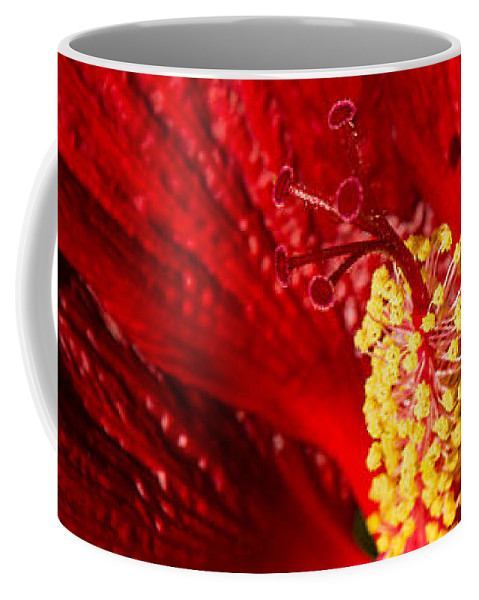 Passionate Ruby Silk Coffee Mug featuring the photograph Passionate Ruby Red Silk by Georgia Mizuleva
