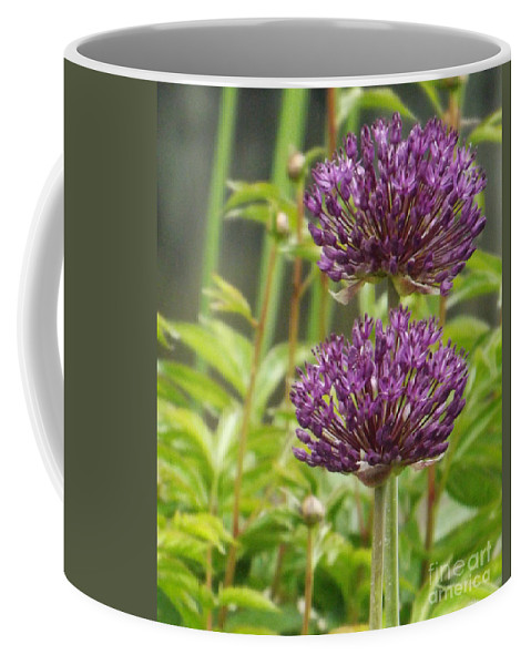 Garden Coffee Mug featuring the photograph Passionately Purple by Brenda Brown