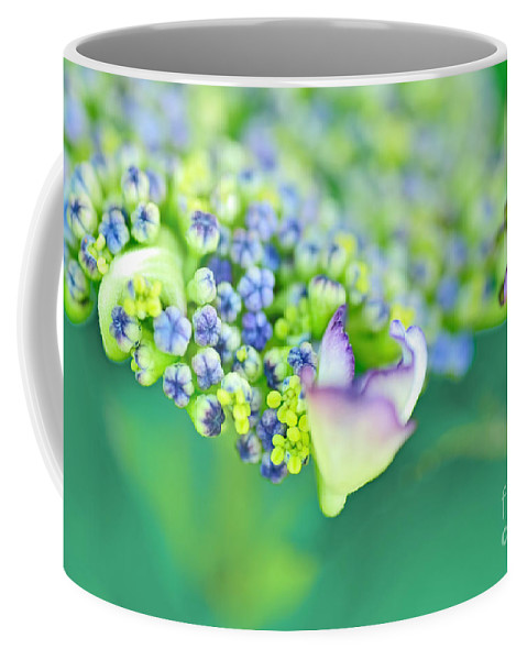 Photography Coffee Mug featuring the photograph Pastel Buds by Kaye Menner
