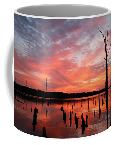 Sunrise Coffee Mug featuring the photograph Pastel Morn by Roger Becker