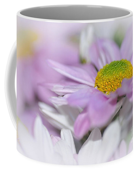 Photography Coffee Mug featuring the photograph Pastel Mums by Kaye Menner