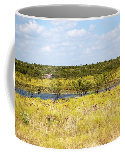 Pasture Coffee Mug featuring the photograph Pasture Horse 14414 by Jerry Sodorff