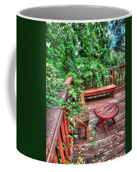 Peaceful Coffee Mug featuring the photograph Peace Nature And Geometry by Lanita Williams