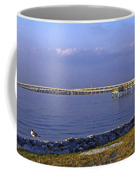 Route 41 Bridges Coffee Mug featuring the photograph Peace River Bridge by Sally Weigand