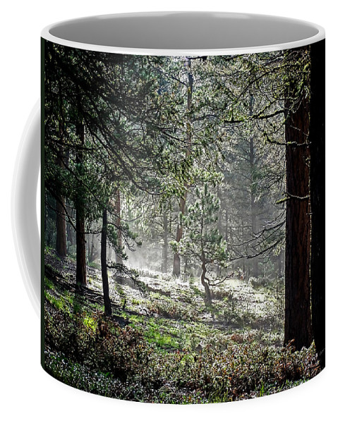 Colorado Coffee Mug featuring the photograph Peaceful Morning by Ernie Echols