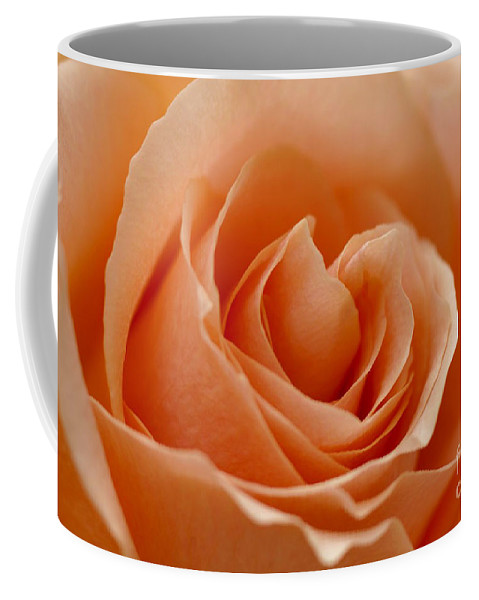 Peach Coffee Mug featuring the photograph Peach by Carol Lynch
