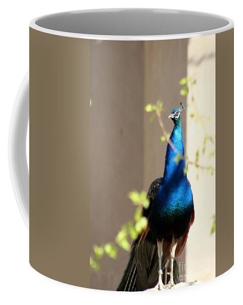 Animal Coffee Mug featuring the photograph Peacock II by T Reich