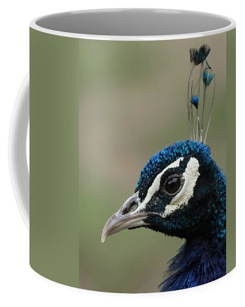 Peacock Profile Coffee Mug featuring the photograph Peacock Profile by Ernie Echols