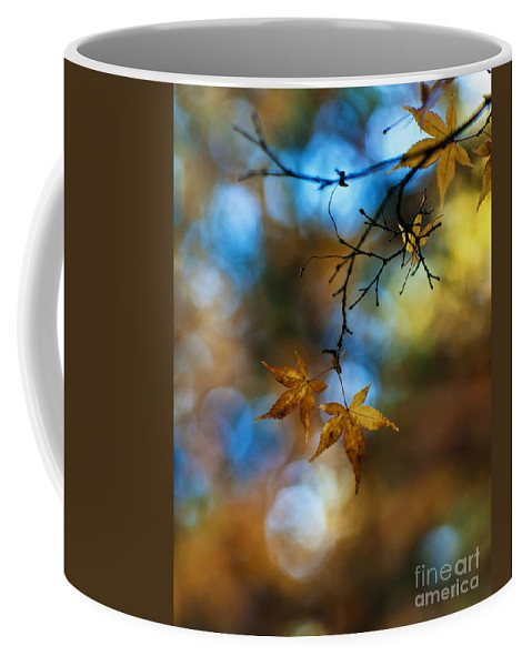Acer Coffee Mug featuring the photograph Pearlescent Acers by Mike Reid