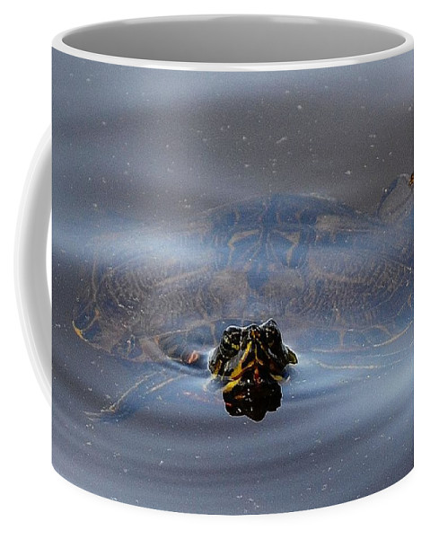 Turtle Coffee Mug featuring the photograph Peek A Boo by Tara Potts