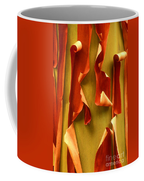 Pacific Madrone Coffee Mug featuring the photograph Peeling Bark Pacific Madrone Tree Washington by Dave Welling