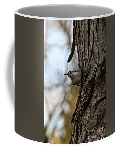 Outdoors Coffee Mug featuring the photograph Peeper Peeks by Susan Herber