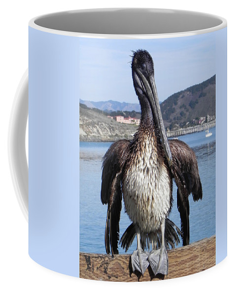 Pelican Coffee Mug featuring the photograph Pelican At Avila Beach Ca by Kathy Churchman