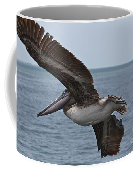 Pelican Coffee Mug featuring the photograph Pelican Fly By by Carol Groenen