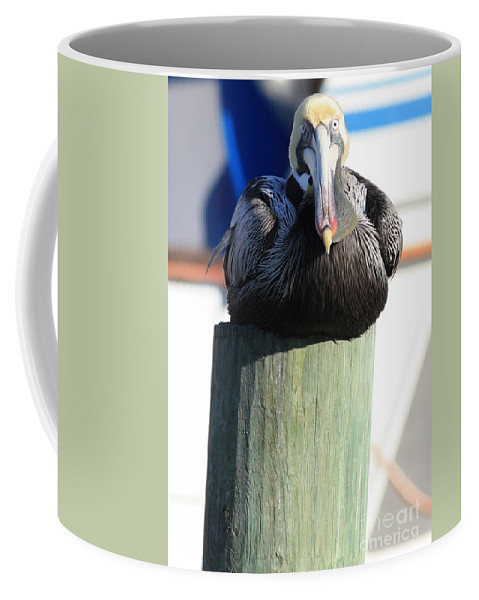 Pelican Coffee Mug featuring the photograph Pelican On Piling by Carol Groenen