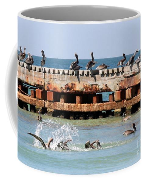 Pelican Coffee Mug featuring the photograph Pelican Pier by Carol Groenen