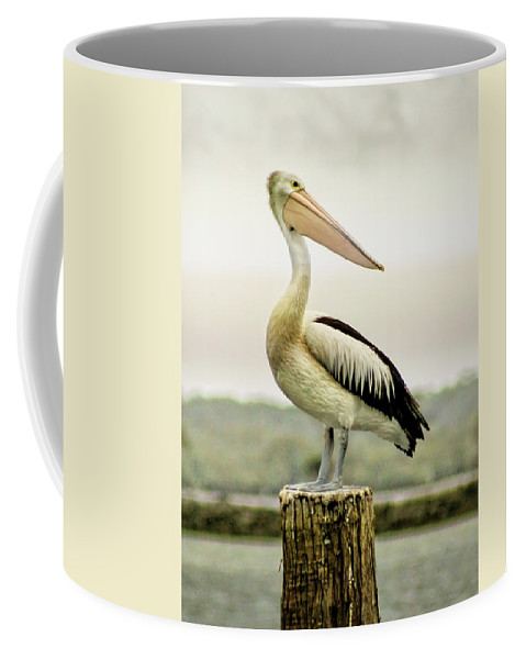 Animlas Coffee Mug featuring the photograph Pelican Poise by Holly Kempe